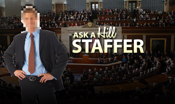 Ask A Staffer: Perpetual Intern