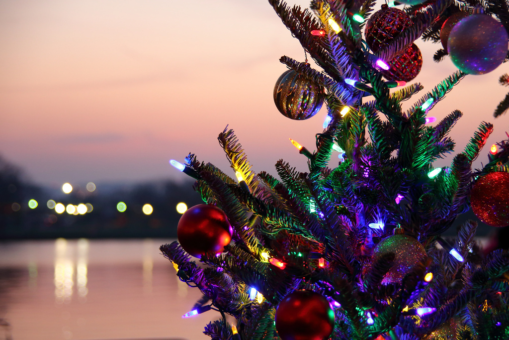 Waterfront Holiday Tree