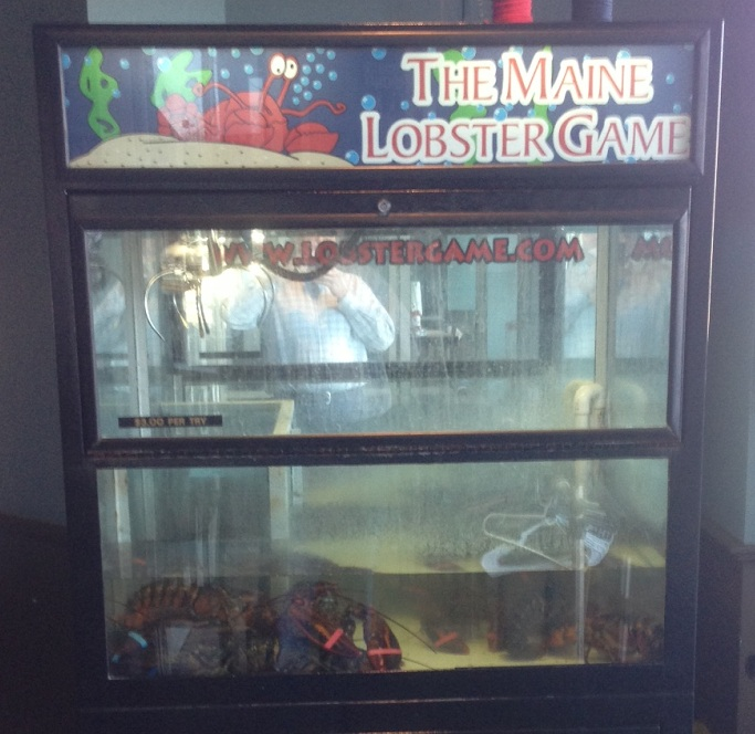 lobster-maine-game