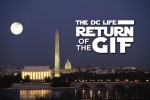 The DC Life